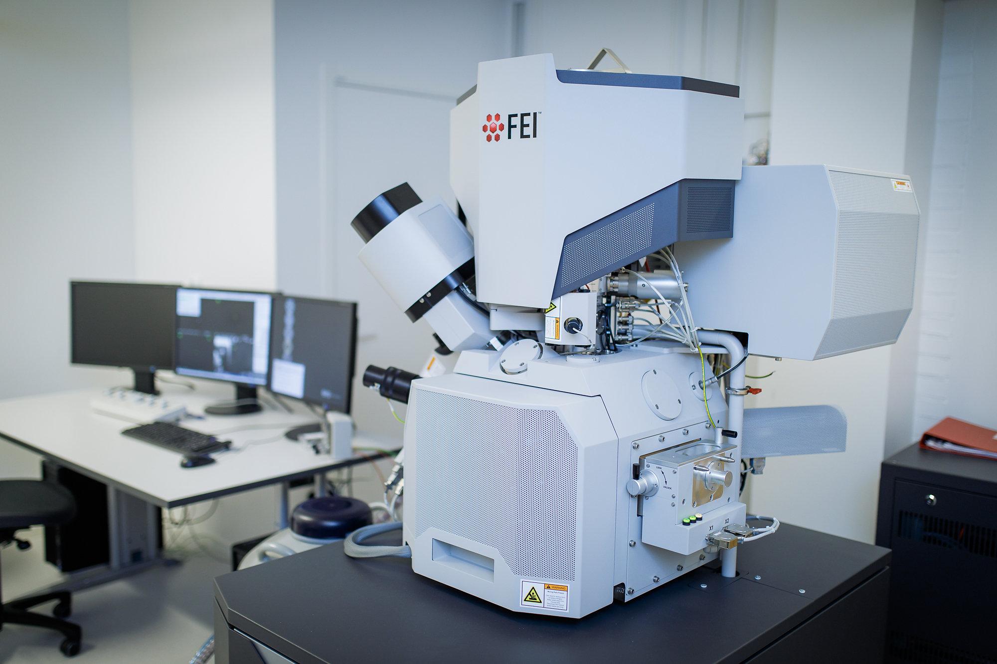 микроскопия фото гугл простых